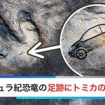 恐竜がトミカで遊んでいた?トミカには50億年の歴史があったらしい!