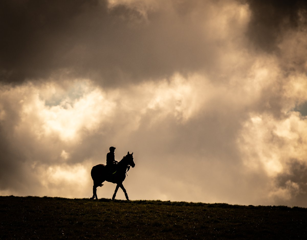 Just one of many spectacular views @NewmarketGallop ... #lonerider #horseracing #equinephotography #silhouetteshot #nikon #wolrdhorseracing #stunningcloudspic.twitter.com/a1XCXfpE3s