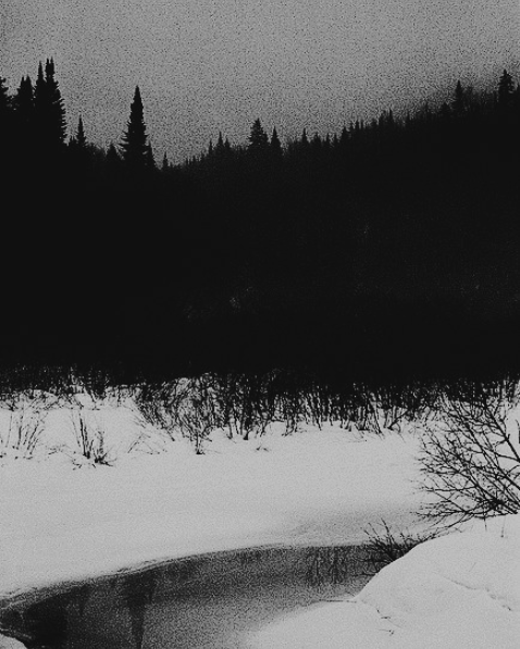 The redoubt of the forest and the snow, the protection of my people. #landscape pic.twitter.com/FOInXvU274