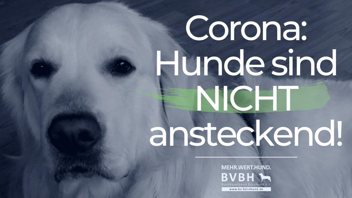 #CoronaVirusDE