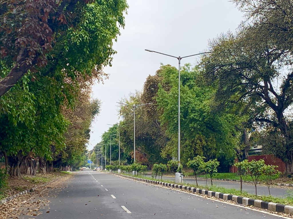 """S on Twitter: """"#Chandigarh under #Corona lockdown. As beautiful as ever.  All pictures taken on phone by yours truly :)… """""""
