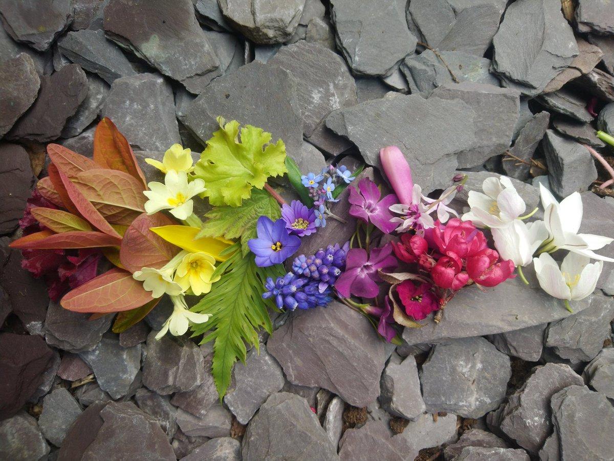 Thankyou all NHS staff and key workers  #staysafe #rainbowwindow #flowerpower pic.twitter.com/YuIm6gypnY