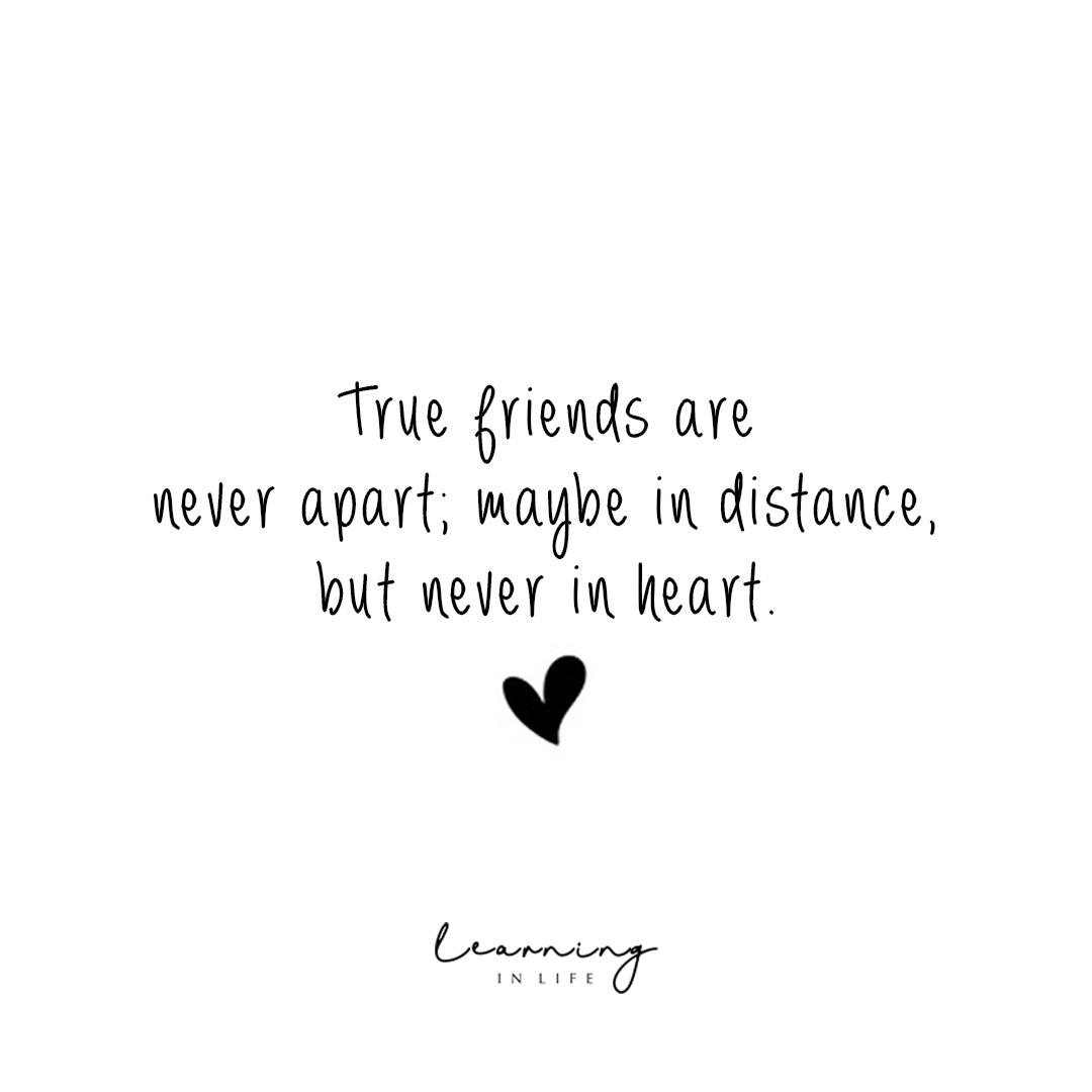 True friends https://learninginlife.com/true-friends/ #friendquotes #friendship #truefriendspic.twitter.com/z0WKr9bIpt
