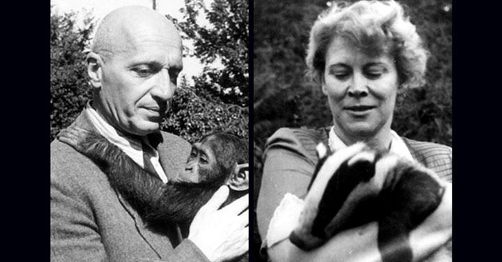 We all need inspiration in times like these. Warsaw Zoo director Jan Żabińska and his wife, Antonina, risked their lives to smuggle 100s of Jews from the Warsaw ghetto, hiding them on zoo grounds. Watch 4/1 at 9:30 am ET to learn about the #ZookeepersWife. facebook.com/holocaustmuseu…