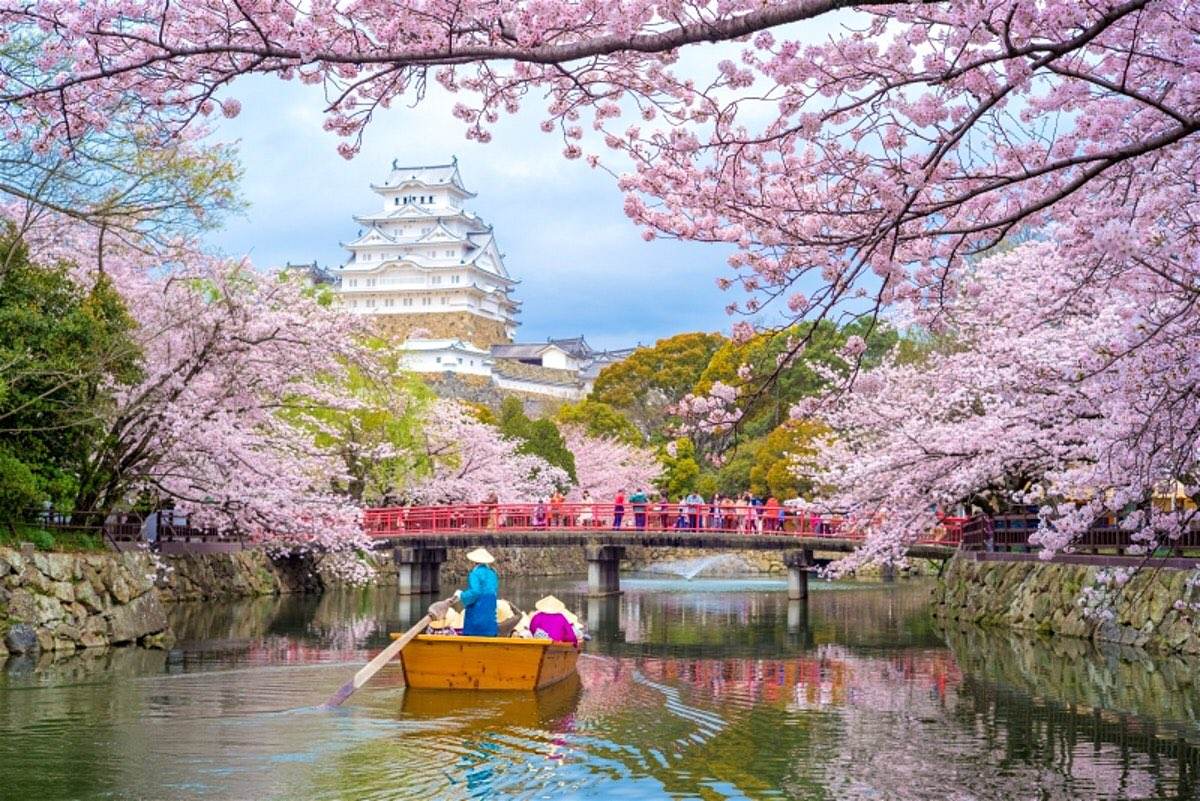 I want to go to Japan in spring  to Switzerland in summer to the Netherlands in autumn and to Norway in winterpic.twitter.com/tTFwgHvQf5
