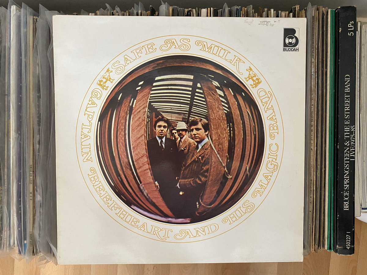 Day 11: You'll be pleased to learn that today's #recordaday is Captain Beefheart - Safe as Milk (1967). Not his maddest LP but definitely his first. pic.twitter.com/BtKO1JR3qh
