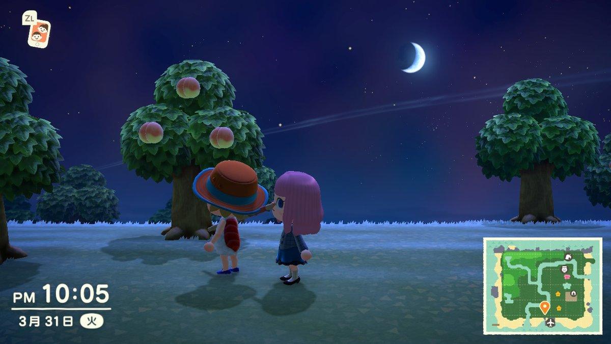 寿司の服進呈  #どうぶつの森 #AnimalCrossing #ACNH #NintendoSwitch pic.twitter.com/yJlCxBB2Qn