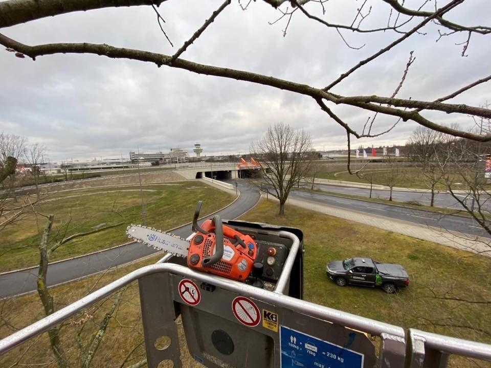 Vliegveld #BerlinTegel is tot op heden nog open, maar de vliegtuigen zijn op één hand te tellen. Komen er op een normale dag gemiddeld zo'n 65.000 passagiers door de gates, nu zijn het er nog maar 1500. 😲 Gelukkig loopt ons project gewoon door. 🙌 #baumpflege #berlin #bkc