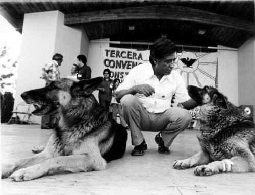 """We know we cannot be kind to animals until we stop exploiting them -- exploiting animals in the name of science, exploiting animals in the name of sport, exploiting animals in the name of fashion, and yes, exploiting animals in the name of food."" ― #CesarChavez #CesarChavezDay"