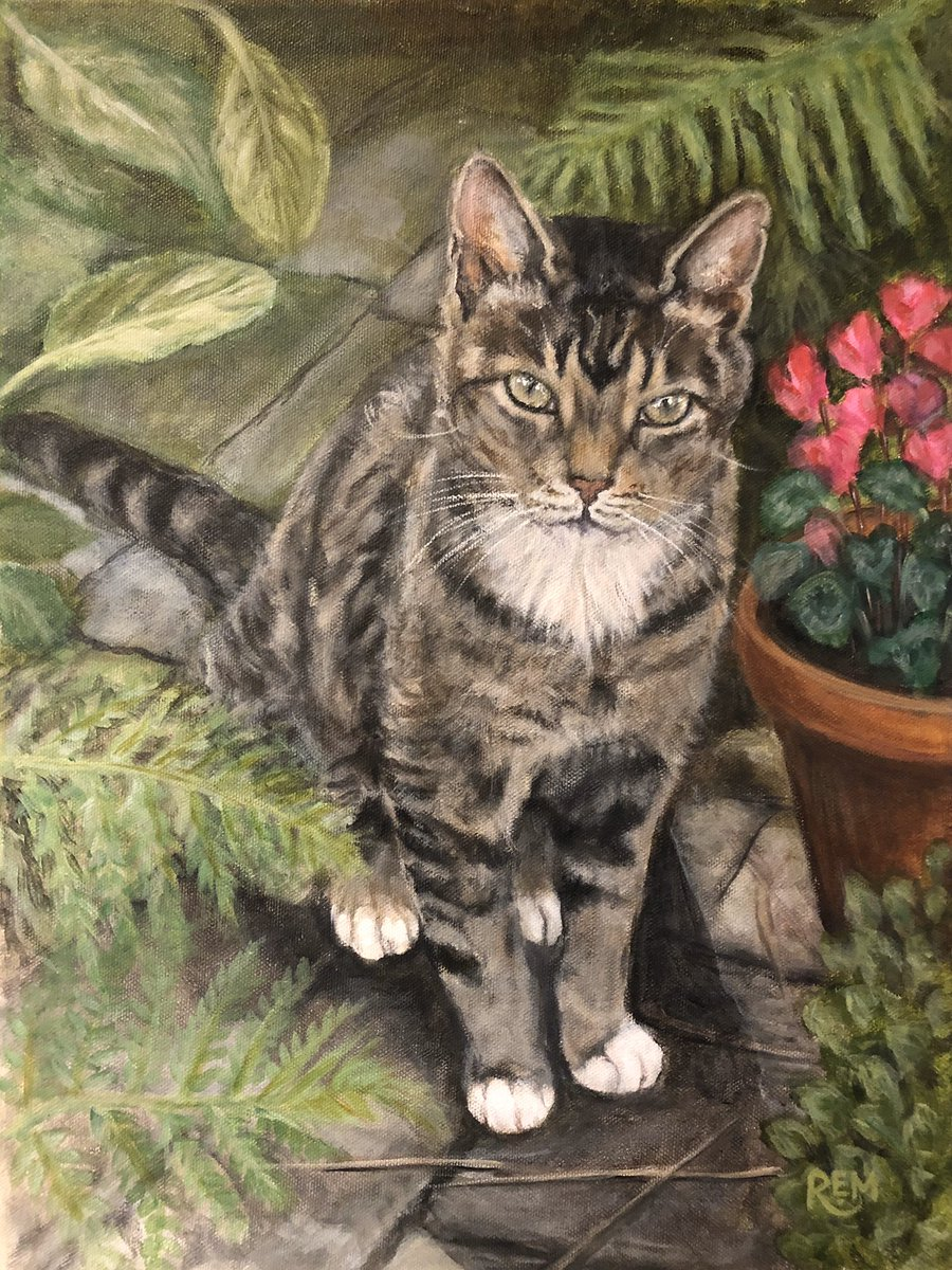 Recent commission #acrylic on canvas #catsoftwitter #cat #gato #chat #animalportrait #animalart #animalMarch #ArtistOnTwitter #artpic.twitter.com/0hCQ0AKyIh