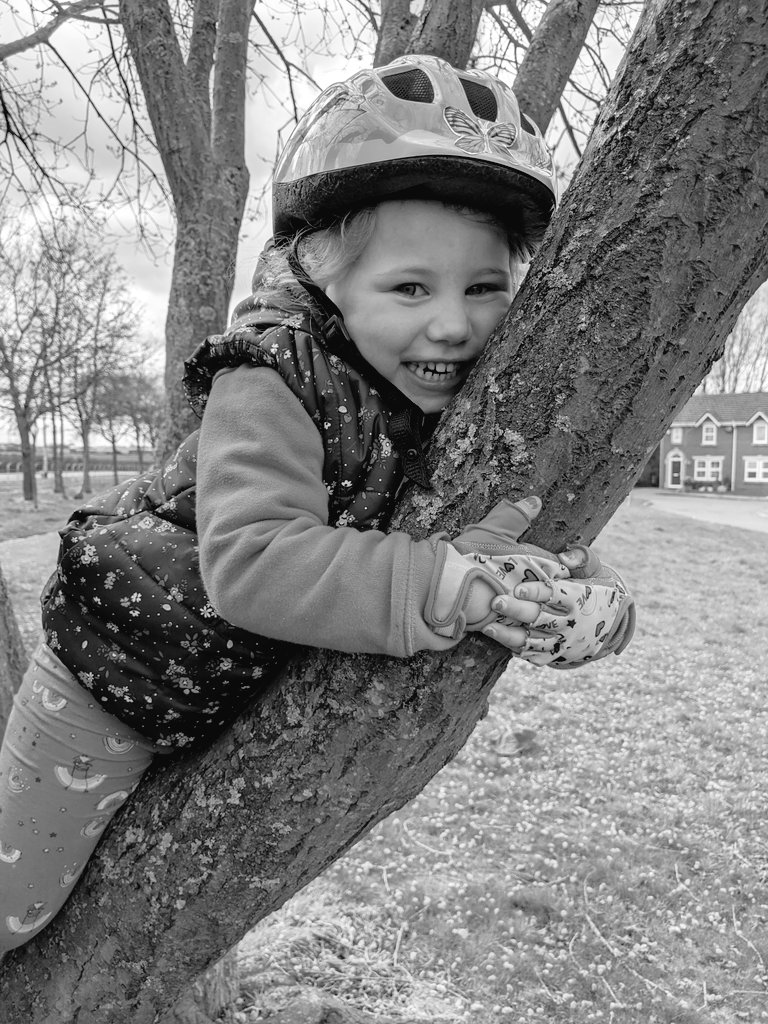 Can't believe in 3 days I'll be in charge of a yr old  wowzers..  just casually tree climbing  mid balance bike  ride #NearlyFour #GrowingUpTooFast #BirthdayInLockdown pic.twitter.com/4Jk0Q9arXF