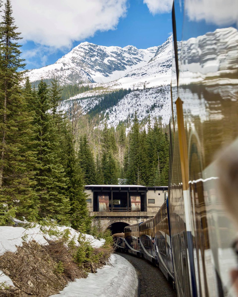 Each travel experience has its own story to tell. One of my favorites was venturing through the #CanadianRockies aboard the @RMountaineer.  The crisp air, towering mountains and beautiful wildlife make for unforgettable moments. #WeWillTravelAgain #GoCollette #VisitCanadapic.twitter.com/XoCdzLARLe