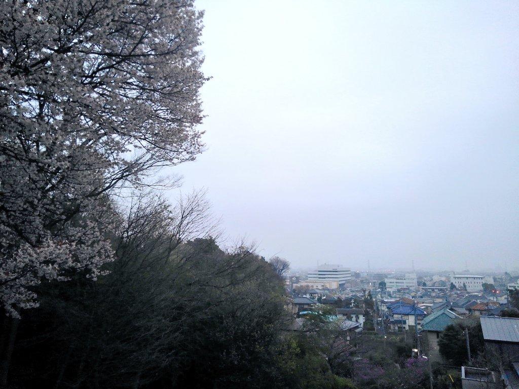 令和2年 4月1日(水) おはよー  今朝は川良栄作さんからのリクエストです  https://youtu.be/3pOMP0ja3nU  花見で喧騒まくし立てるより、閑寂な桜並木の街路樹をこの曲と伴わせながら、歩いてみては如何でしょう?         by 川良栄作  #イマソラ #いまそら  #空ネット #東京日野市pic.twitter.com/1B6T7EXJNj
