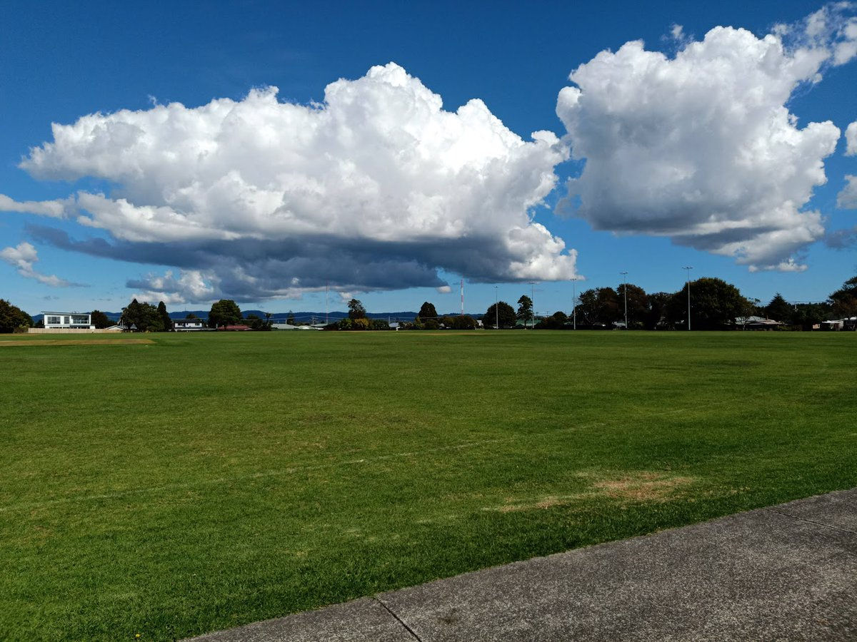 An accumulation of cumulus - West Auckland