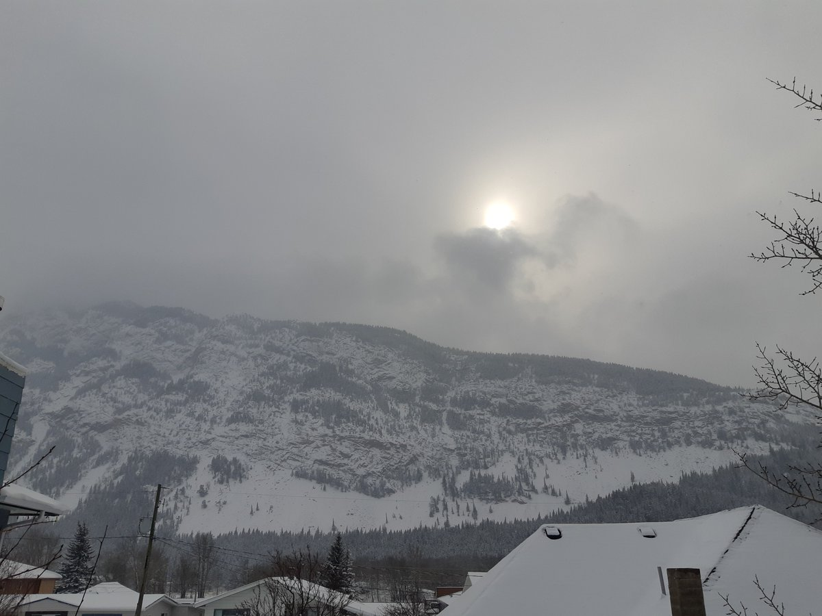 Supporting our local businesses is highly important so we ordered some pizza then to balance the universe a little more we went and shoveled all our neibours out   #TakeOutTuesday #beautiful #mountains pic.twitter.com/sSa3fzJm99