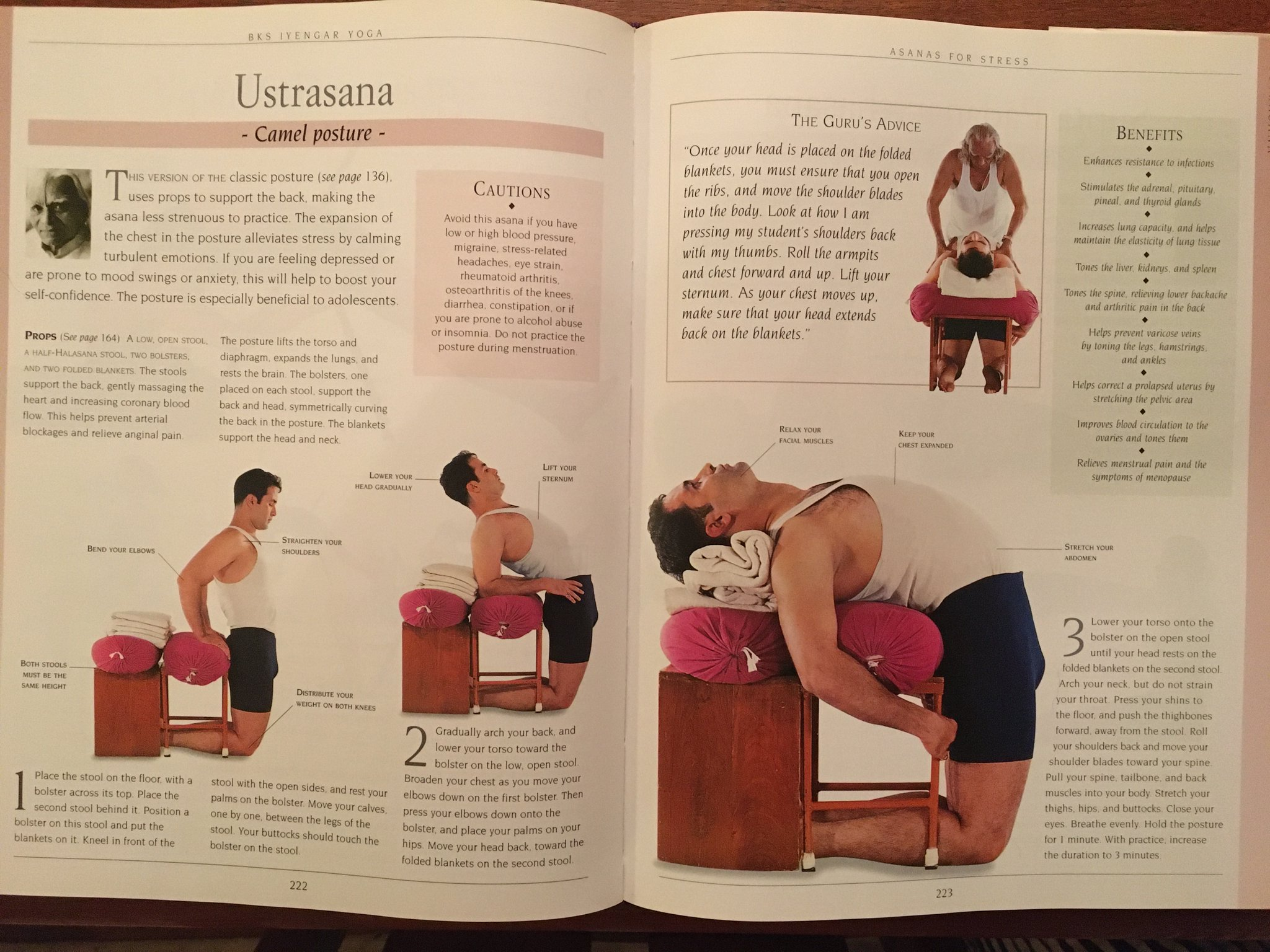 Austin Iyengar Yoga On Twitter Show Your Lungs Some Love With Ustrasana Which Builds Lung Capacity And Elasticity The Second Pic Is From B K S Iyengar S Iyengar Yoga The Path To Holistic Health