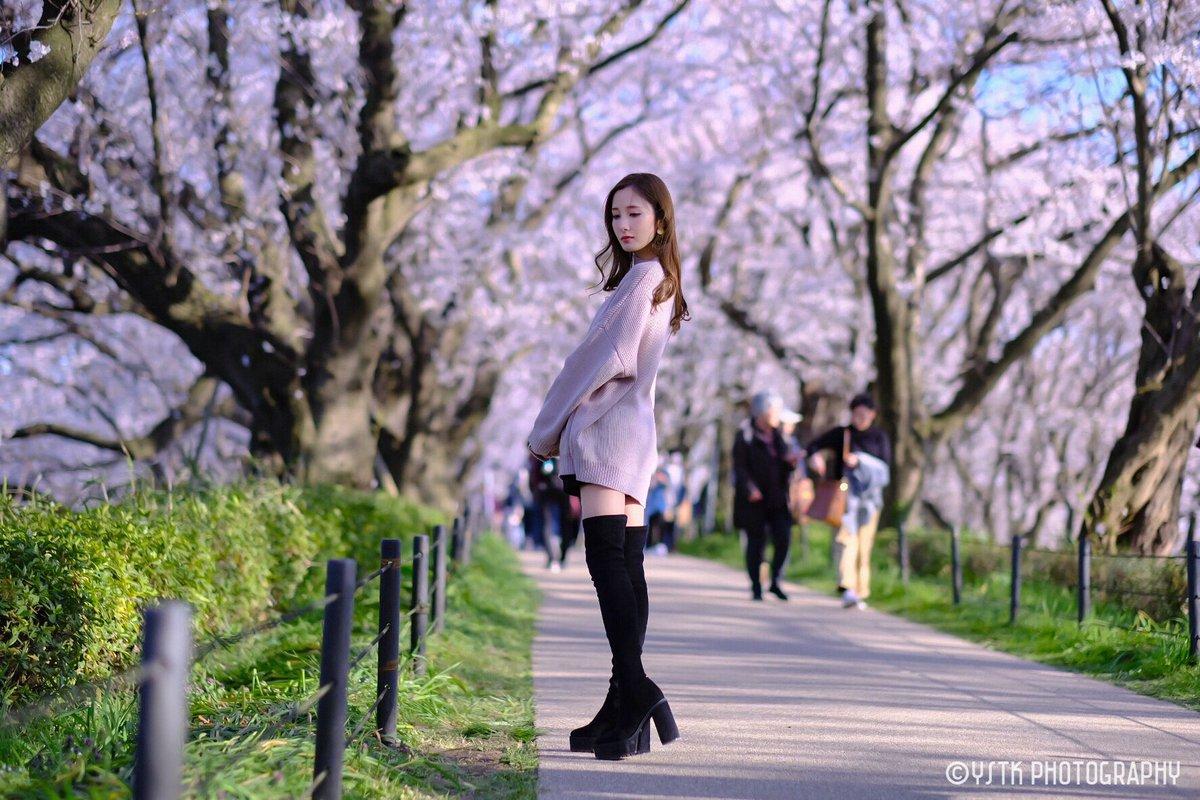 「Sakura street」  X-T2+XF56/f1.2r  Location:権現堂桜堤  Model:Nanami Asaka( @Nana3_Asaka )  #桜 #さくら #浅香ななみ #portrait  #ポートレート #cherryblossom  #photography  #fujifilmxt2  #fujifilm_xseries #portraitphotographypic.twitter.com/Pxp6whuhXr