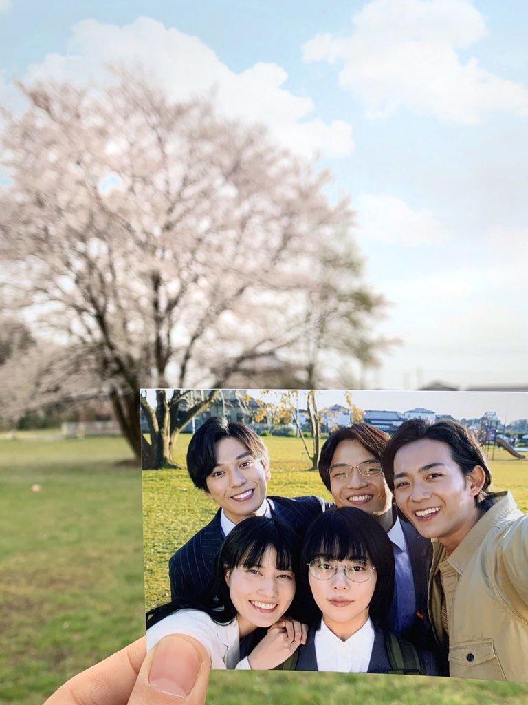 test ツイッターメディア - ドラマの中で5人が再会した、約束の4月になりました🌸あの桜の木も満開になりました。 初めて経験する大変な毎日ですが、一人でも多くの人がサクラたちのように『夢』に向かって歩き出せる新年度になることを願っております✨ 🌸「#同期のサクラ」Blu-ray・DVDboxは4月22日発売です🌸 @video_vap https://t.co/H56rWQqhY0