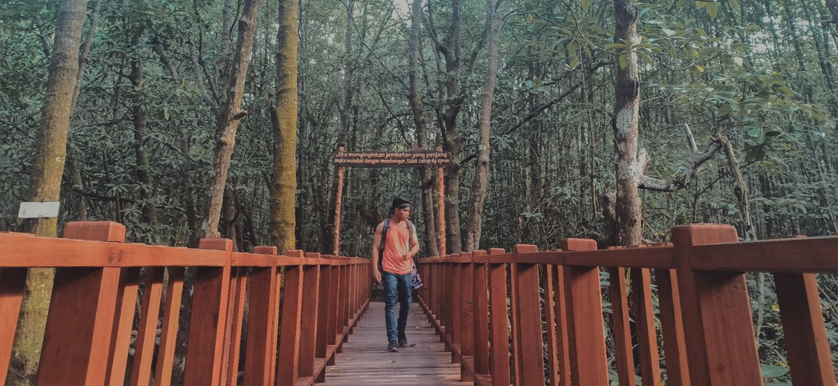"Ambil saja gambarmu bersamaku,, jangan ambil kecantikanku ""aku dan alam"" - - #alam #pemandanganalam #akudanalam #pelancong #travelphotography #traveler #bakpacker #traveling #photography #nature #natureaddict #naturephotography pic.twitter.com/Y6WZmnZZcL"