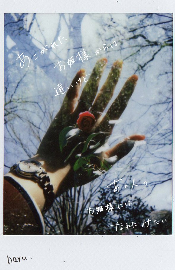 【Hand Memory2】  #photo #photography #film #filmphotography #チェキ #作品撮り #写真で伝える私の世界 #写真で奏でる私の世界 #キリトリセカイ #手書きpic.twitter.com/rbCHRUV853