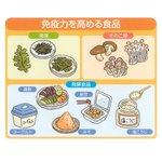 食べ物から免疫を高めよう!免疫力を高めるのに効果的な食べ物はこちら。