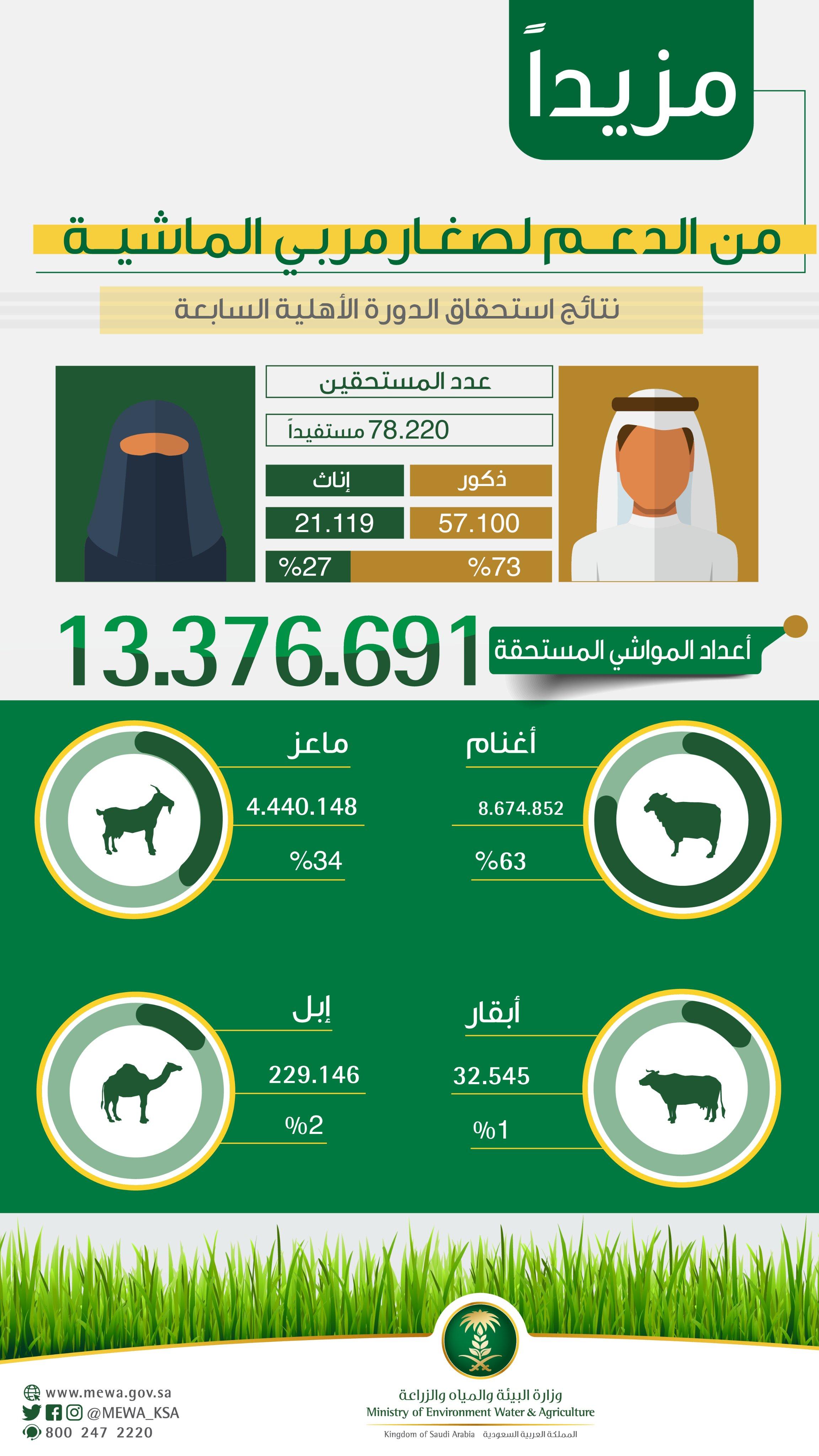 وزير البيئة السعودي صرف الدفعة السابعة من الدعم الشهري لصغار مربي الماشية معلومات مباشر