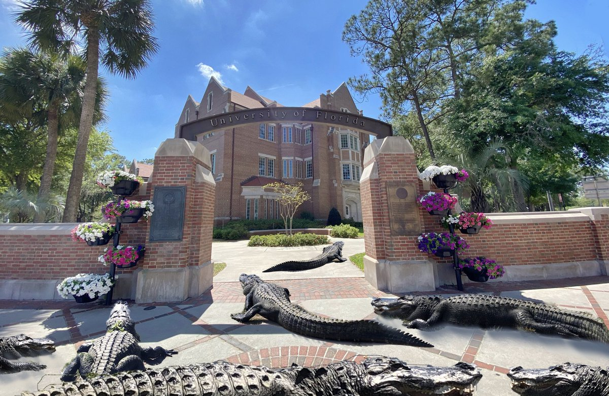 Our potential situation when we return to work and school #UF 😉🐊
