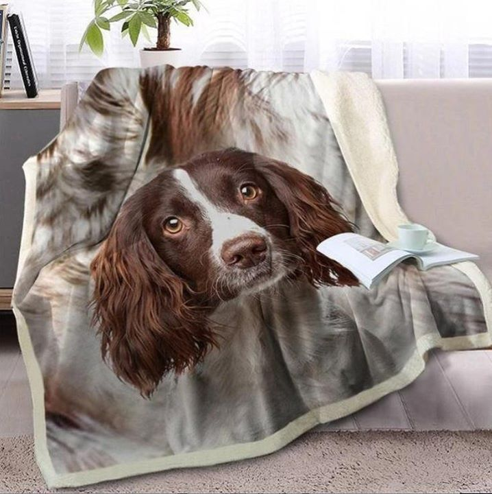 5+ Cutest #CockerSpaniel Gifts for Cocker Spaniel Lovers! 😍😍😍😍 ⁠ ⁠  ⁠ ⁠ #love #dog #instaggood #dogsofinstagram #happy #cute #photo