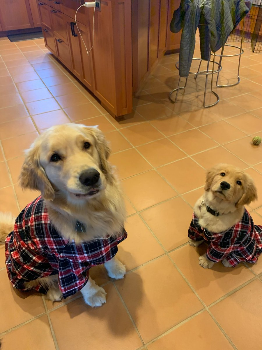 @darth Pippin and Lucy like to stay in their pajamas