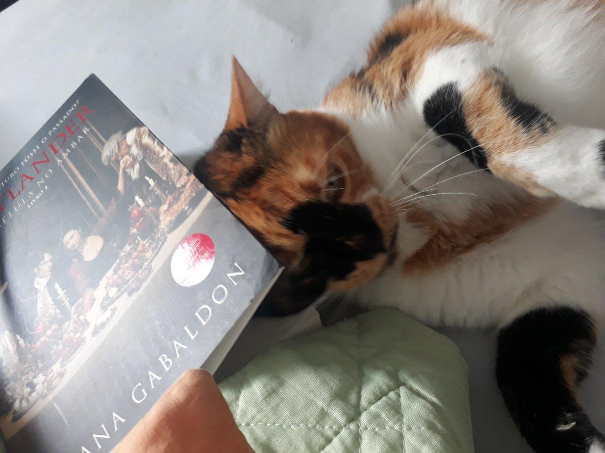 She is not very social; Outlander is your favorite. @Outlander_STARZ @TallShipProds @caitrionambalfe #Brazil  pic.twitter.com/KJMRB9cmDp