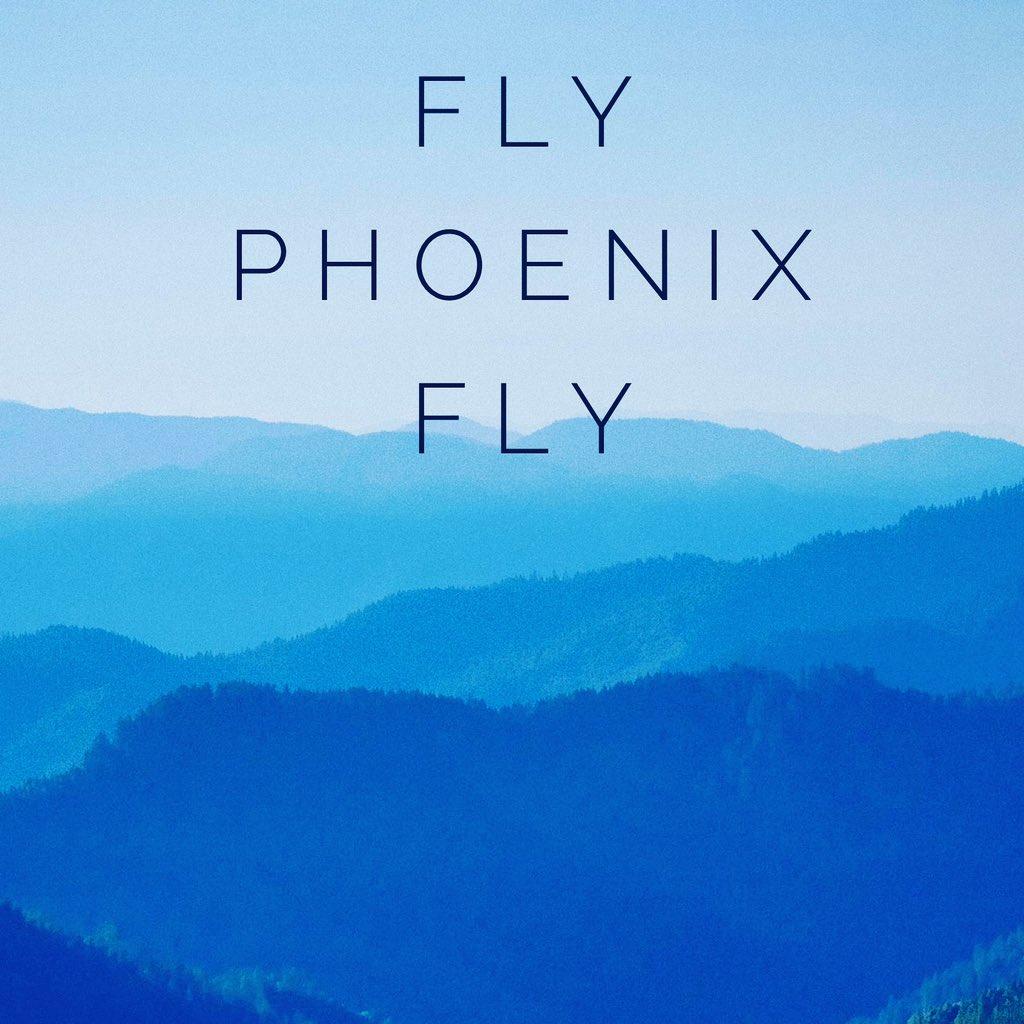 Fly Phoenix Fly, You Got This   #WednesdayWisdom #FaithOverFear #pushyourself #pushthrough  #motivation  #comeback #followforfollowback #dailymotivation #dailyinspiration #dailyquotespic.twitter.com/WZMtOMLqSw