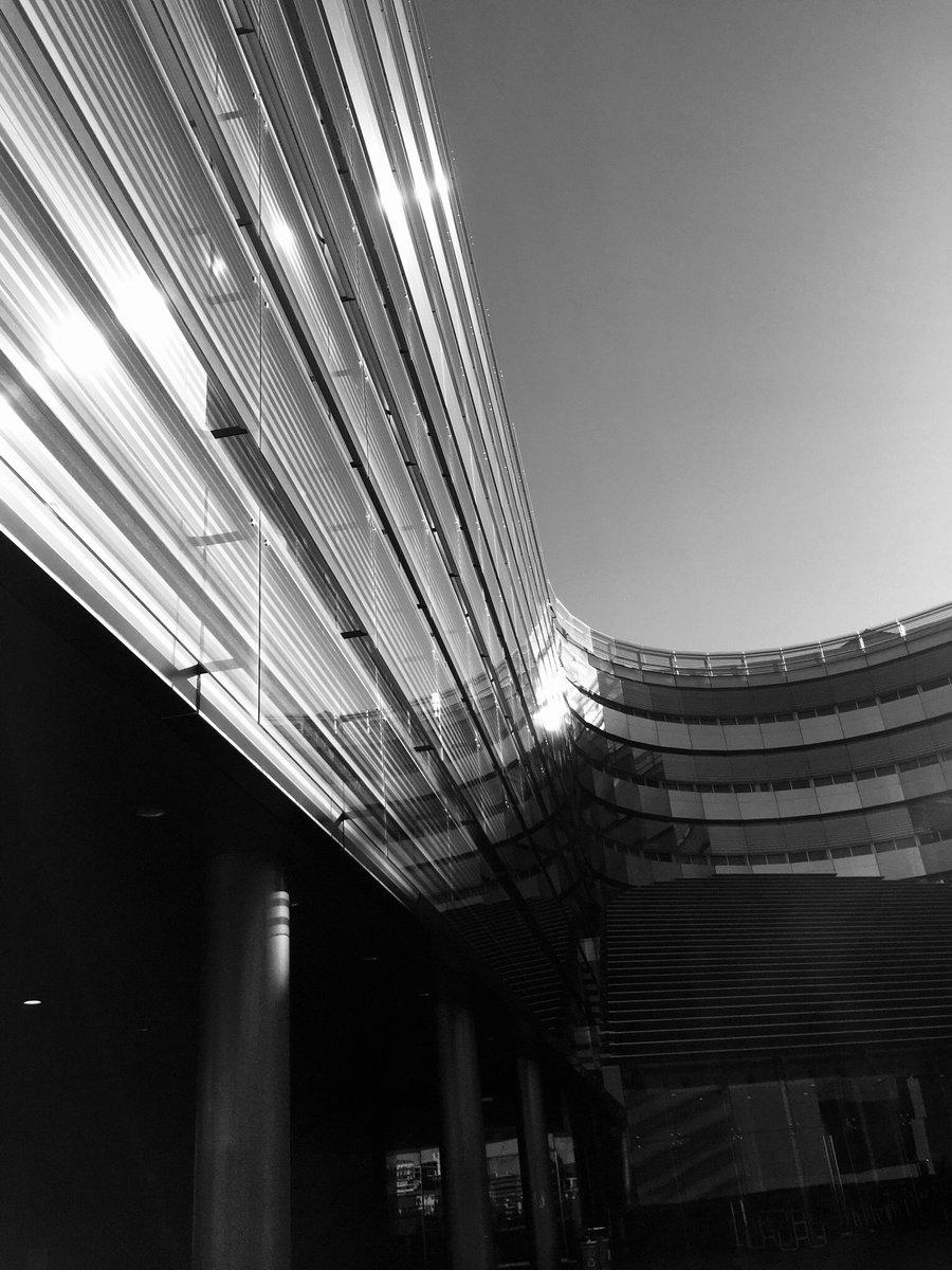 Colour & monochrome wanderings.  #heritagebuildings #albertpark #parks #isolation #lockdownnewzealand #universityofauckland #shotoniphone #photographyiphone #shadows