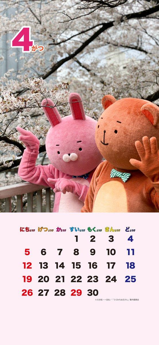 よい子のみんなにウサオ君とクマオ君から、4月のカレンダーのプレゼントだよっ!🗓🎁スマホの壁紙にして使ってねーっ☆#うらみちお兄さん #ウサオ君 #クマオ君 #桜