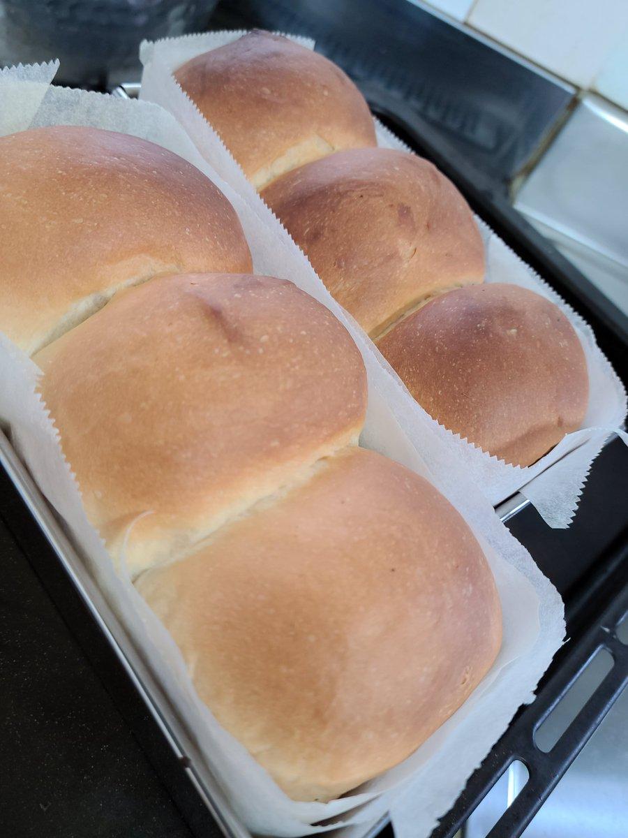 暇なのでシリーズ生食パン焼きました😊🍴❤#手作りパン#料理好きな人と繋がりたいパウンドケーキ型で生食パン by em1nayn