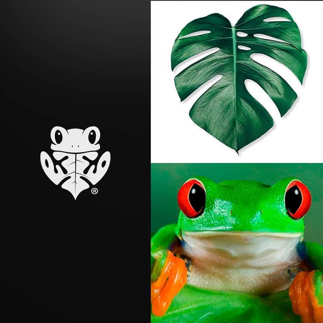 Logo concept for Frog +leaf Combination. ⠀⠀⠀ Follow @logomakers_hq⠀⠀ .⠀⠀⠀⠀⠀ by jonnatanjaes #studio #typography #logoinspiration #logo #logoinspire #logodaily #illustration #frog #monogram #drawing #sketch #logomakers_hq #brandingagency #brandingidentity