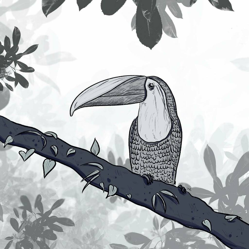 I'm trying to make my drawings less flat by adding a background and foreground to create some depth. Also I drew more details and I really like how it turned out. 🌿  What do you think? ✨  #bird #tucan #jungle #leaves  #Doodle #drawing #sketch #blacka…