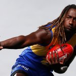 Image for the Tweet beginning: The AFL Evolution 2 player