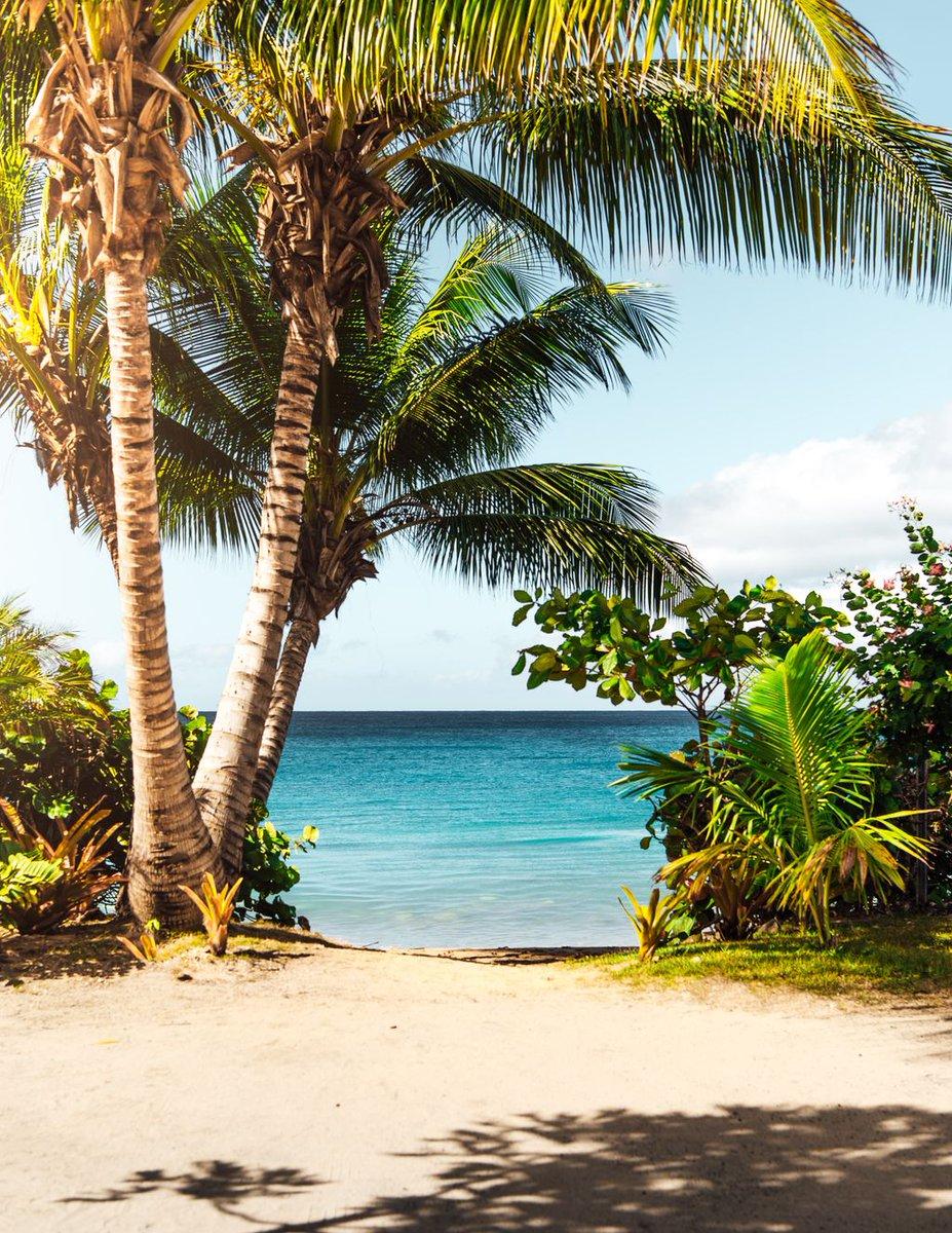 Who's dreaming of an escape right now featuring  Sun  Sand  Sea #beaches #island #islands #instatravel #travelpics #beautifuldestinations #beautifulplaces #beachlife #islandlife #greatesttravels #finditlivit #exploreeverything #wheretofindme   https://www.instantworldbooking.com/pic.twitter.com/Xy7cKH0IIZ