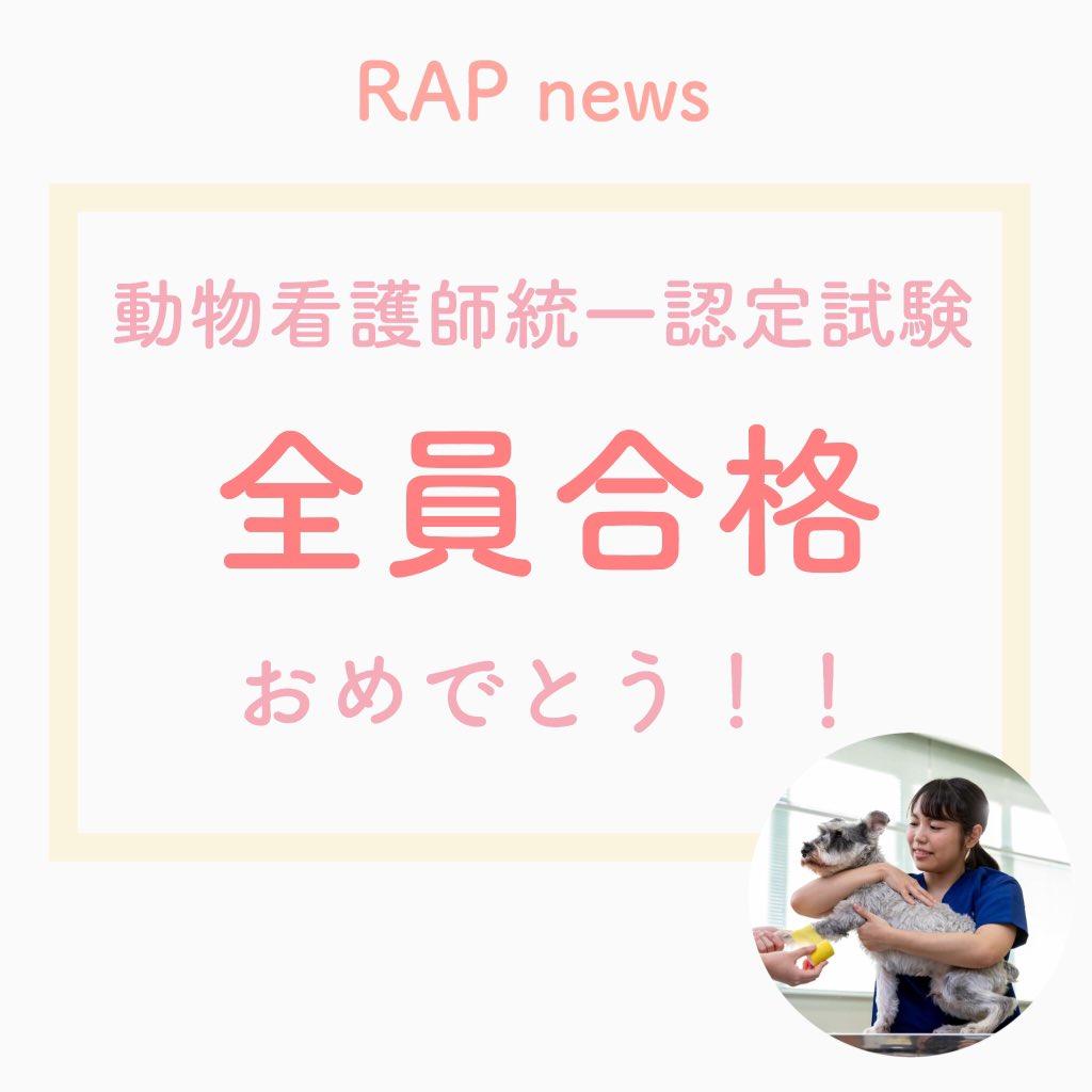 動物看護師統一認定試験『全員合格』おめでとう ルネサンスは動物看護師試験に、開校以来14年連続全員合格なんです  対策授業を頑張っている様子はブログをチェックしてみてね  https://www.rap.ac.jp/care/blog/2020/02/02272/…  #動物看護師 #動物看護師統一認定試験 #チワワpic.twitter.com/bSHM12We05
