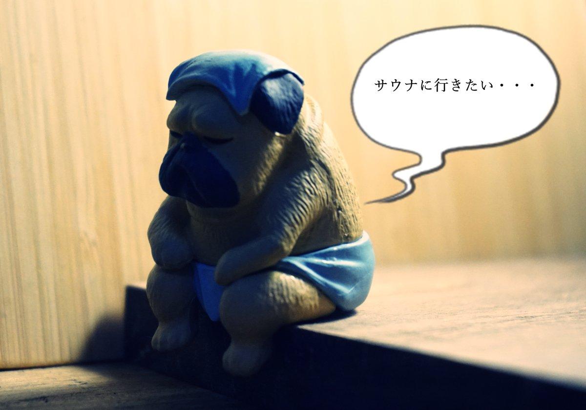 行きたい・・・  #サ道 #サ活 #サウナ pic.twitter.com/X5YfhN4wJb