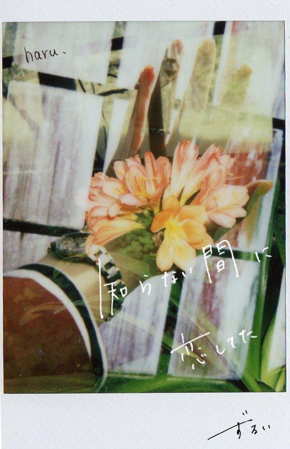 【Hand Memory3】  #photo #photography #film #filmphotography #チェキ #作品撮り #写真で伝える私の世界 #写真で奏でる私の世界 #キリトリセカイ #手書き