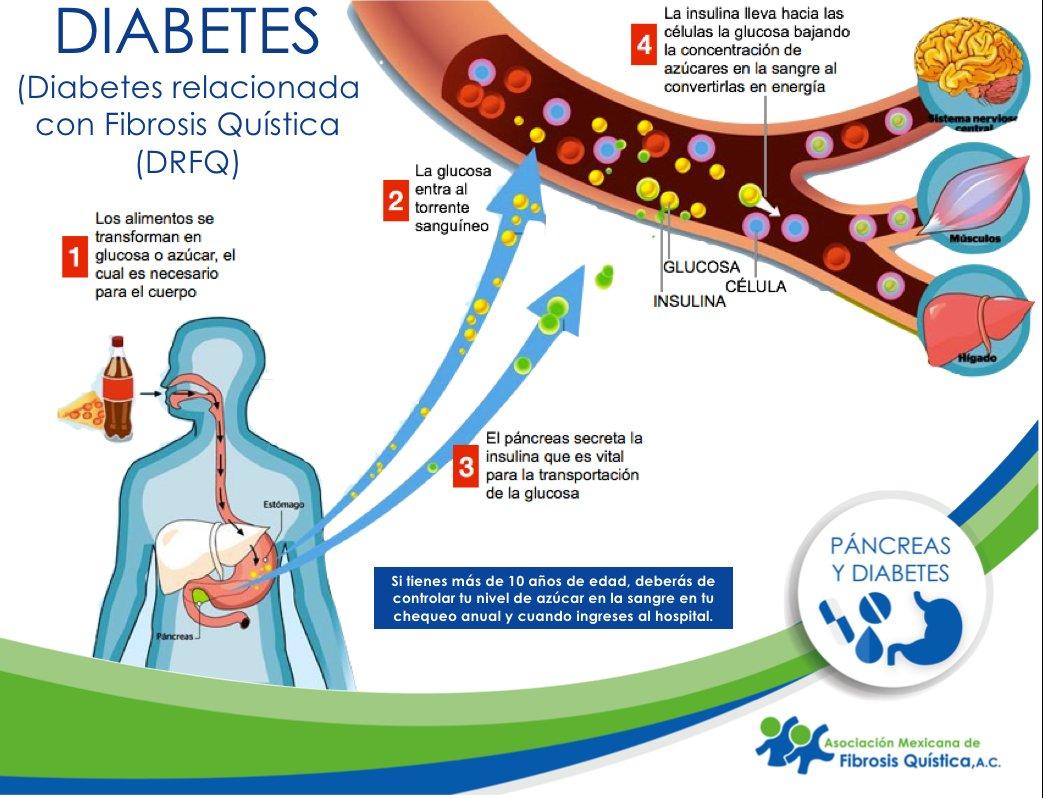 plan de alimentos para la diabetes en urdu