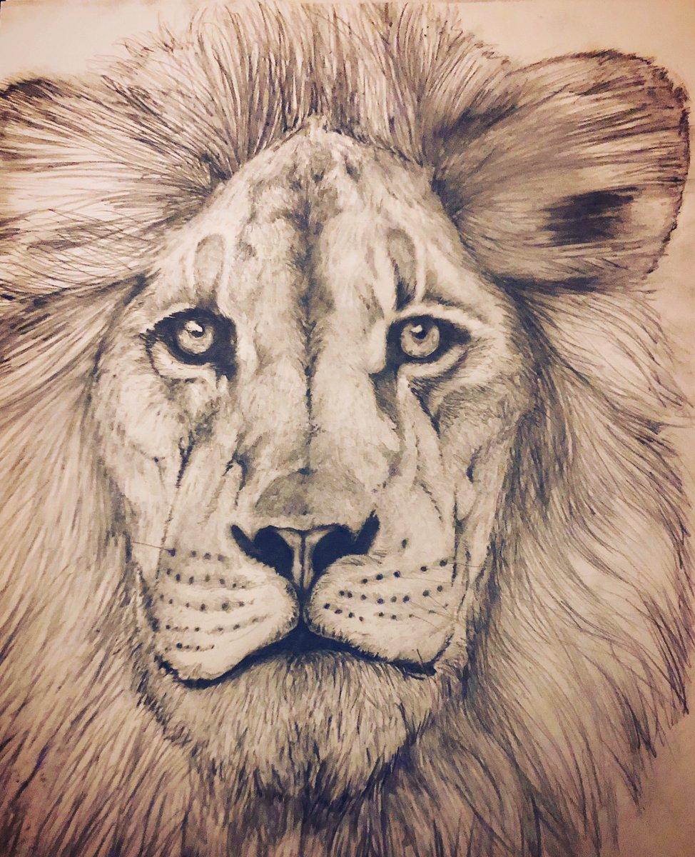 Finished lion doodle #dailydoodle #artrockspic.twitter.com/44ngPRPtnD