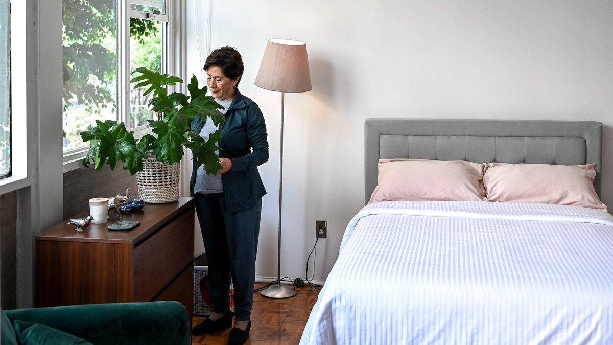 """Luuna в Twitter: """"¿#SabiasQue regar y cuidar #plantas puede ayudar a #relajarte y alejar el estrés? 🌿🌱 Además, algunas son capaces de #limpiar el aire de tu habitación, mejorando notablemente tu calidad"""