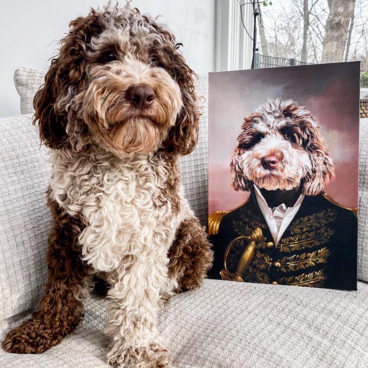 We LOVE this fur colour.  #dogloversfeed #dogloversonly #dogart #petlife #petstagram #petportraits #dogportraits #dogportrait #petstylist #dogstylist #petart #manchesterdogs #pettoys #pettreatspic.twitter.com/DpoEsbZRbr