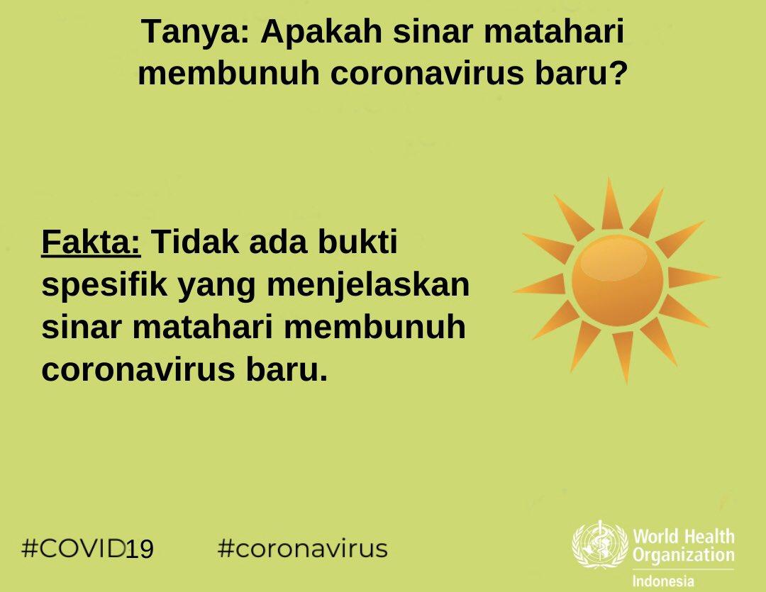 Fakta Tentang Sinar Matahari