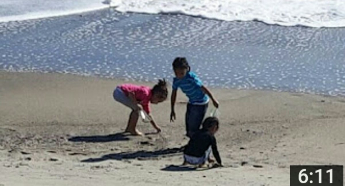 These #kids take their first trip to the #BEACH!  Watch the video: