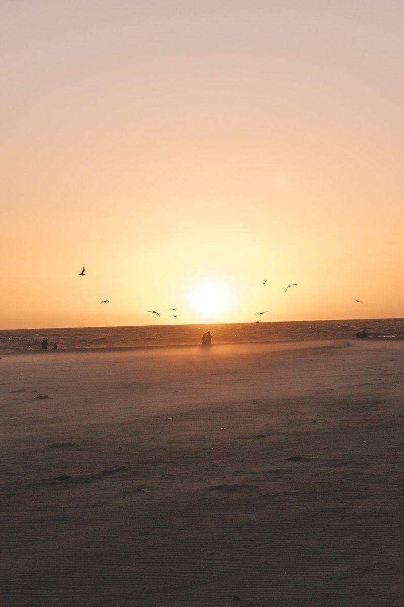 Better days to come 📸 #canon #SunsetDreams #sunsetphotography #goldenhour #beach #santamonica #LosAngeles #photos #photographers #PhotographyIsArt #ResidentEvil3 #ThursdayThrill #fotosíntimas