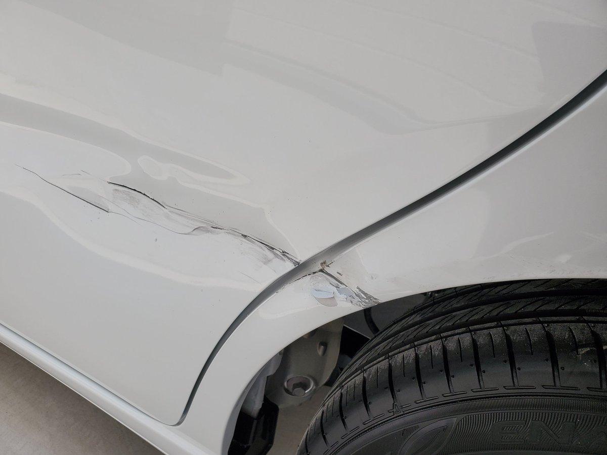 嫁が真っ青な顔をして帰ってきた「ごめん。ホントごめん。」新車を受け取り15分で自宅の角に車をぶつけたらしく、動揺しているのか半泣きで許しを乞うている思えばこんなに謝られたことがあったか。いいんだよ、気にしないでと声をかけながら、嫁の弱みにつけ込んで猫を飼うチャンスと企んでいる