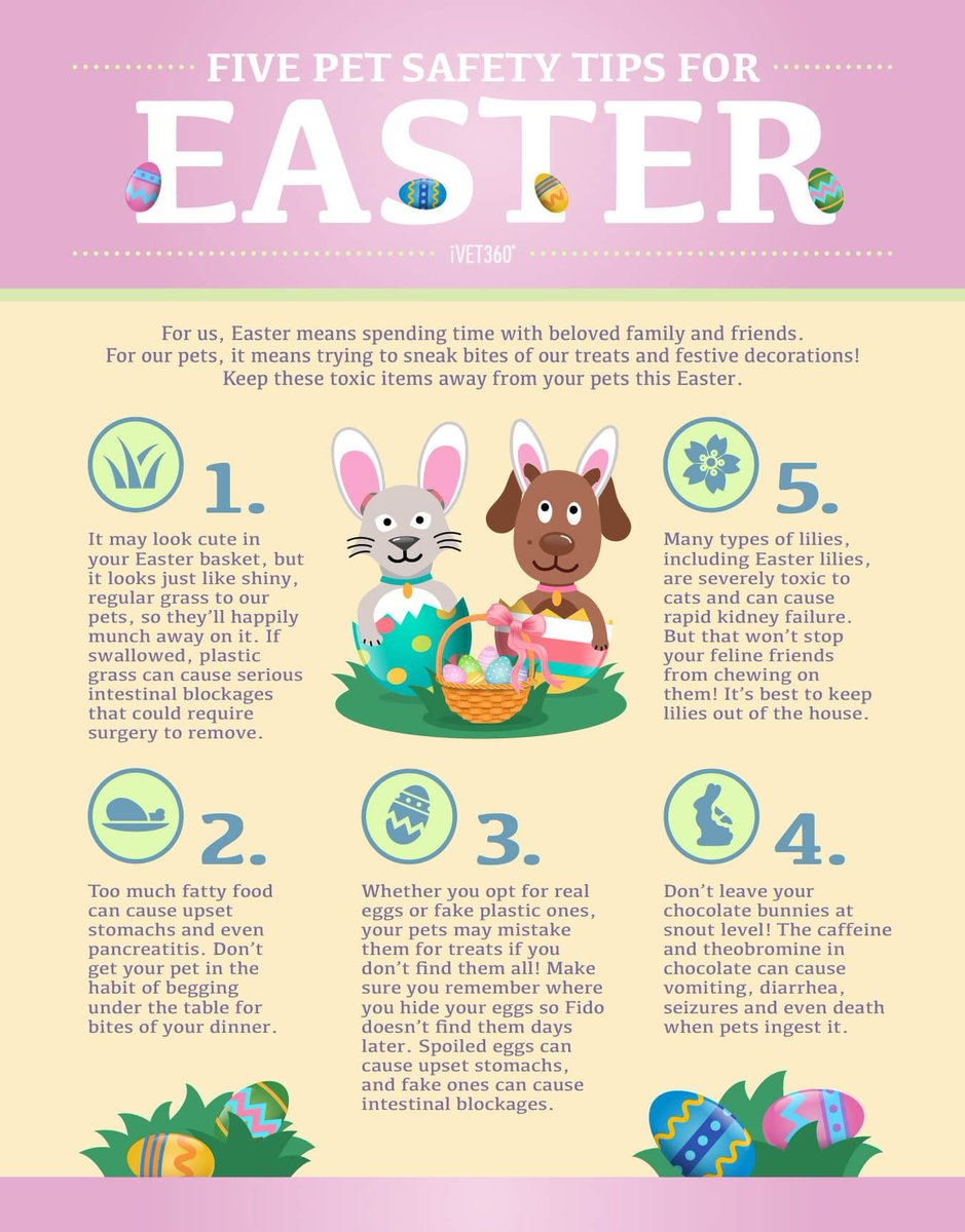 Even though we'r on lock down #Easter is still happening and is the perfect excuse for a #chocolate binge! Please be aware that some of our seemingly harmless Ester traditions can be quite dangerous to our greedy and nosy #pets! If even cornered do not hesitate to give us a call.